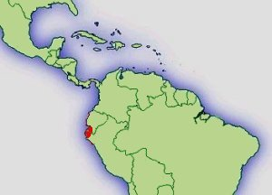 Distribución E. Anthonyi